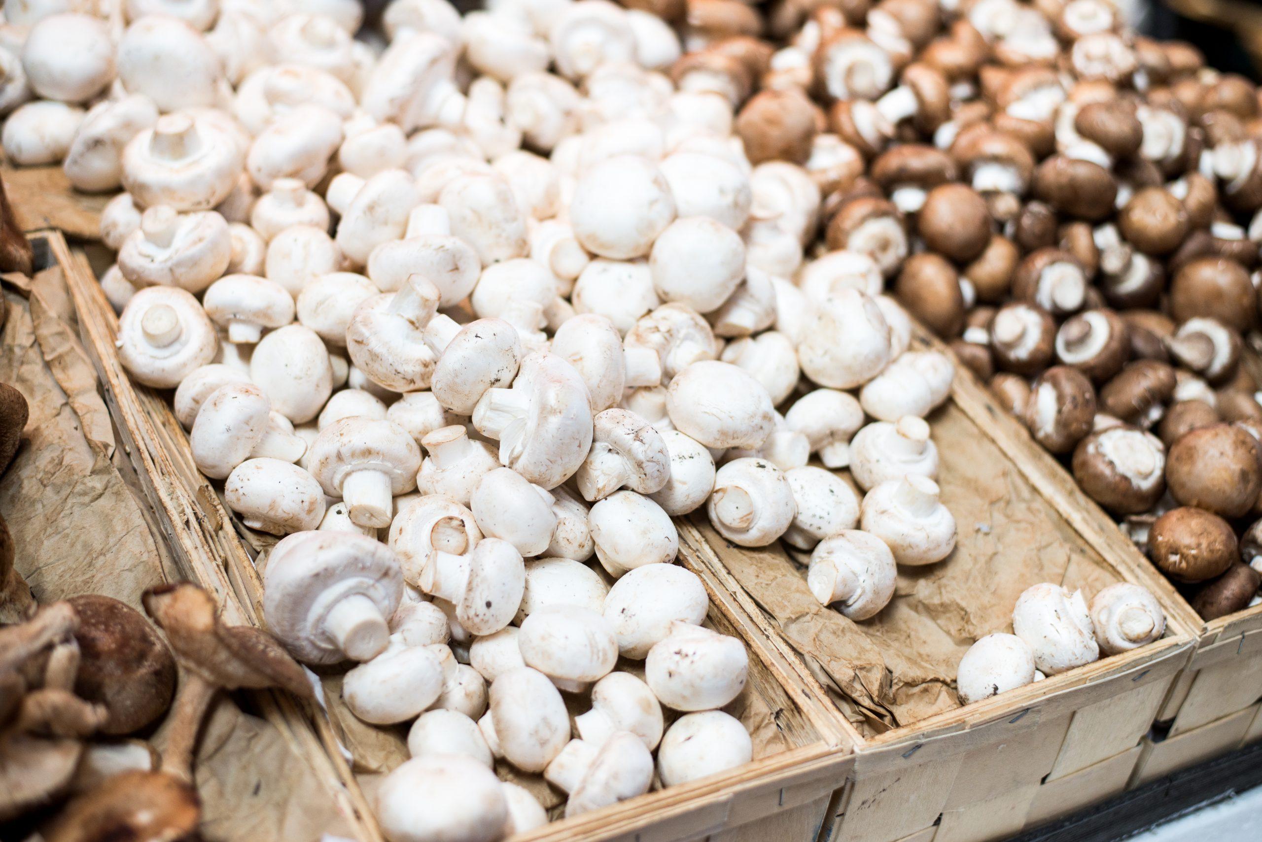 Mushrooms at the market