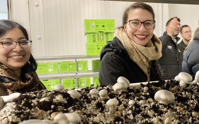 RC-APD team visits SA Mushrooms